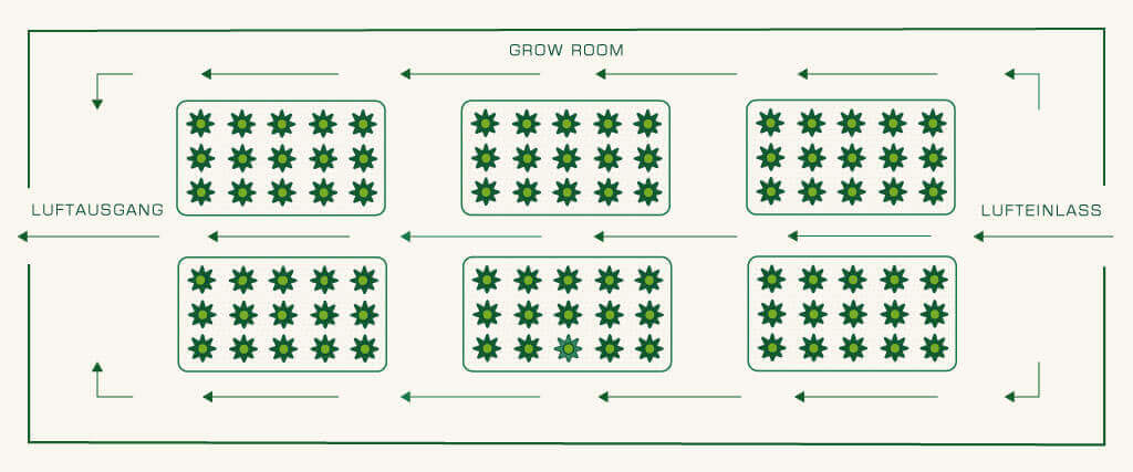 Lüftungssystem im Grow Room